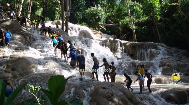 Private Tours from Falmouth Jamaica