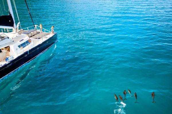 Napali Boat Tours - Kauai