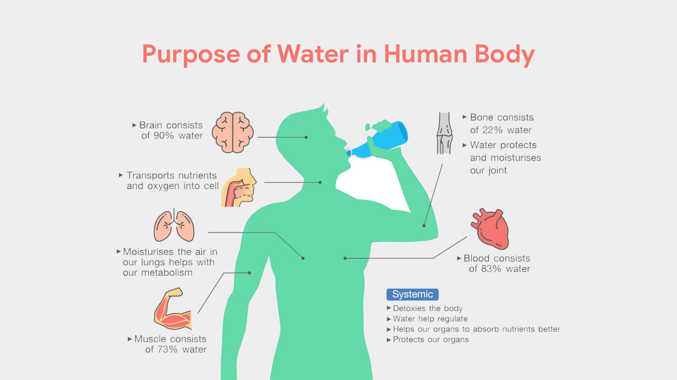 How A Water Purifier Can Help You Prevent Health Issues