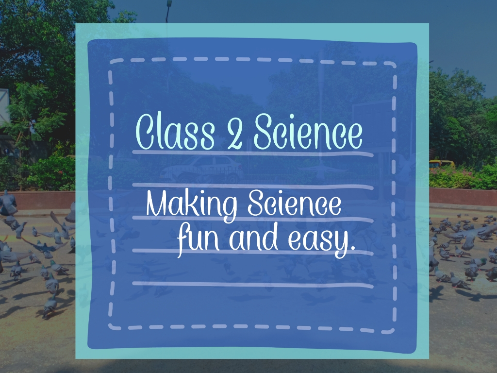Class 2 Science: Making science fun and easy