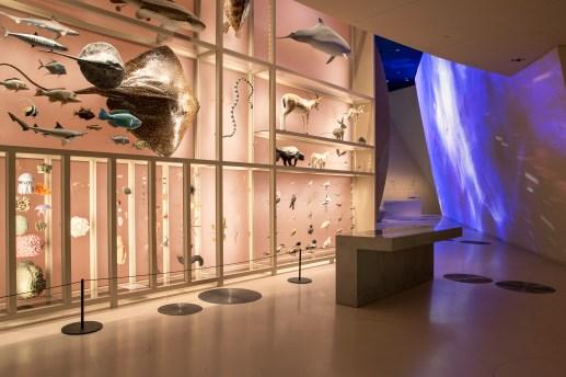 1. NationalMuseumofQatar,Photo Danica O. Kus