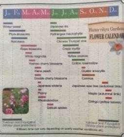 Tokyo Flower Calendar