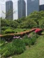Hamarikyu Garden park, Best Living Japan