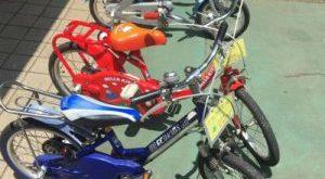 Biking in Yoyogi Park