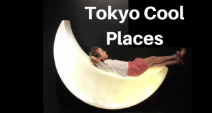 Tokyo Cool Places, Where to take kids in the summer tokyo