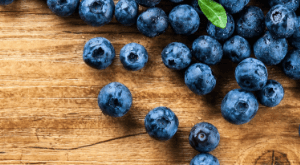 Tokyo Area Blueberry Picking Locations