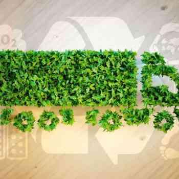 logistica-verde