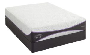 Sealy Optimum Elation Gold Top Mattress Brand