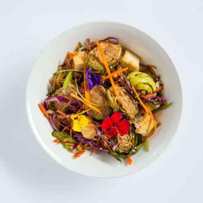Soulara Meals Review