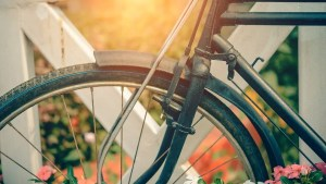 Explore the city on one of many bicycle tours
