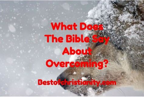 What Does The Bible Say About Overcoming?