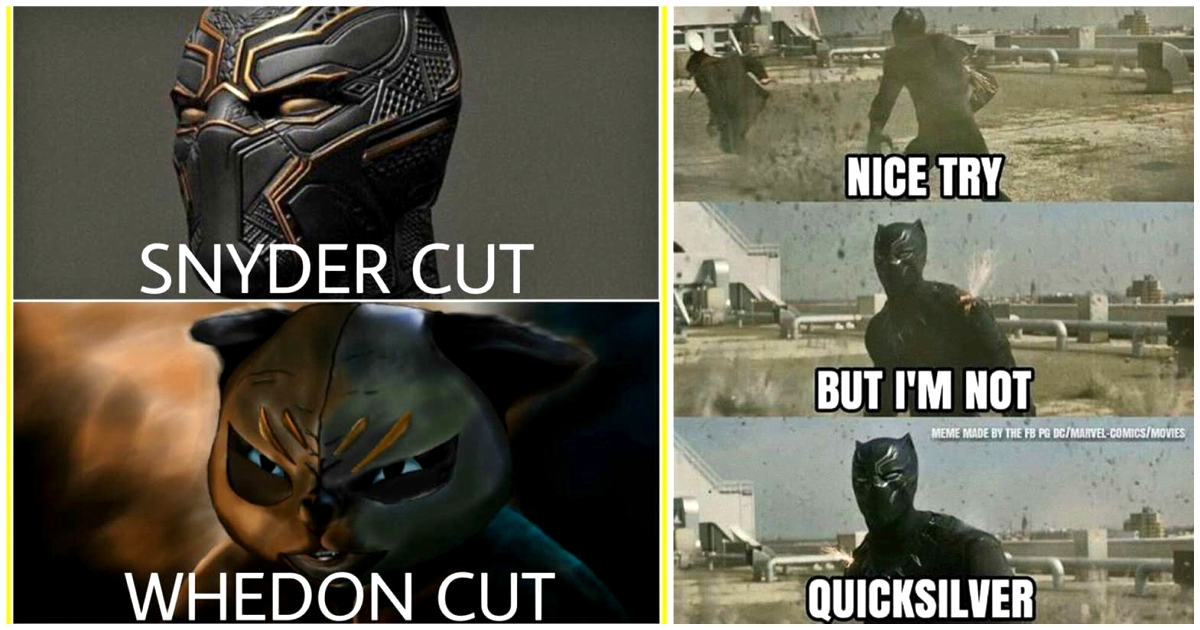 Funny Meme Black Panther : 15 hilarious black panther wakandian memes only for true t'challa