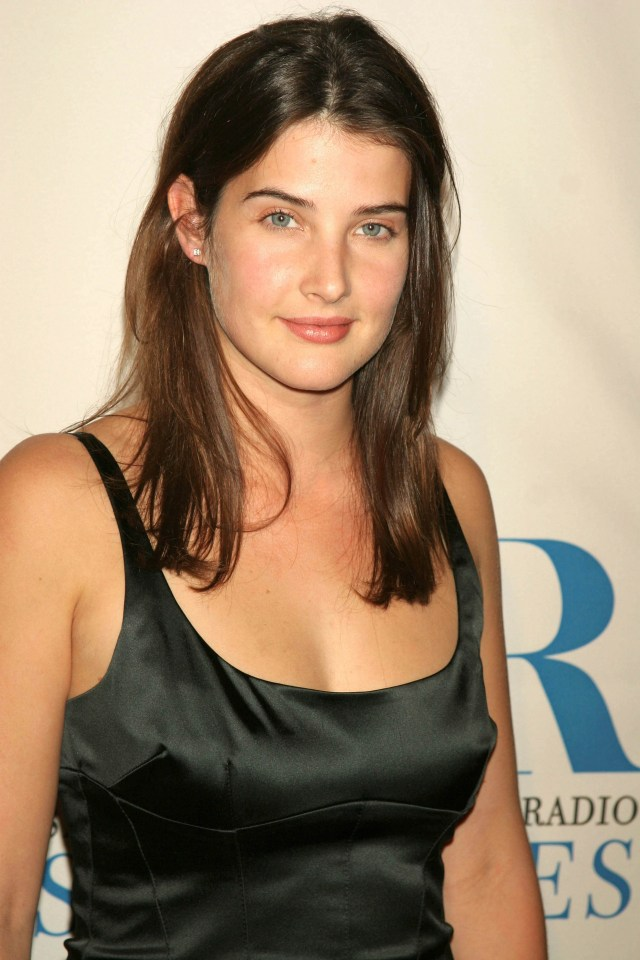 Cobie Smulders Black Dress