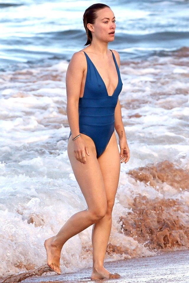 olivia wilde swimsuit pictures