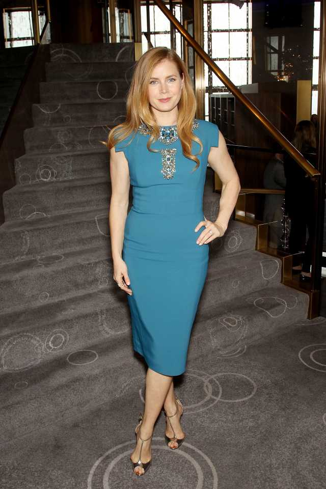 Amy Adams sexy in blue pic