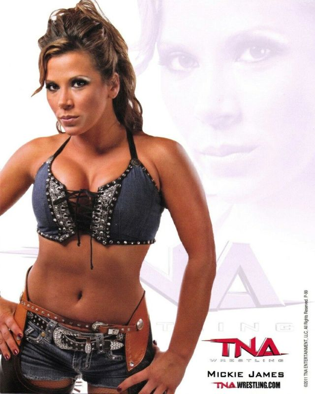 mickie james cleavages sexy