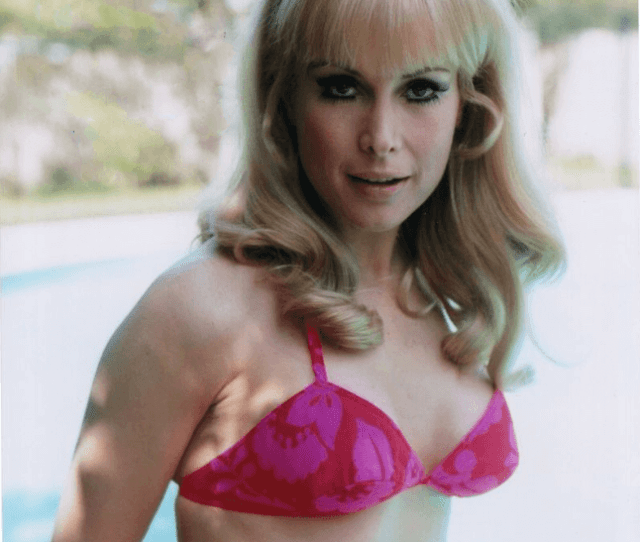 Hot Pictures Of Barbara Eden From I Dream Of Jeannie Are Just