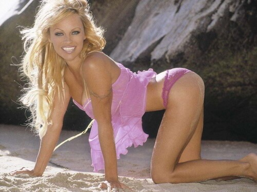 pamela anderson sexy ass pic