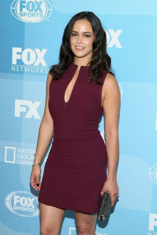 Melissa Fumero sexy busty pictures