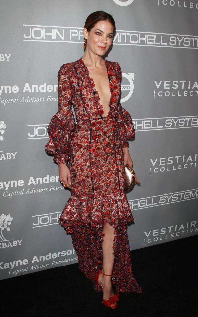Michelle Monaghan beautiful pic (1)