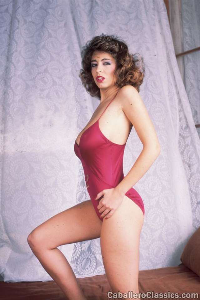 Christy Canyon Lingerie
