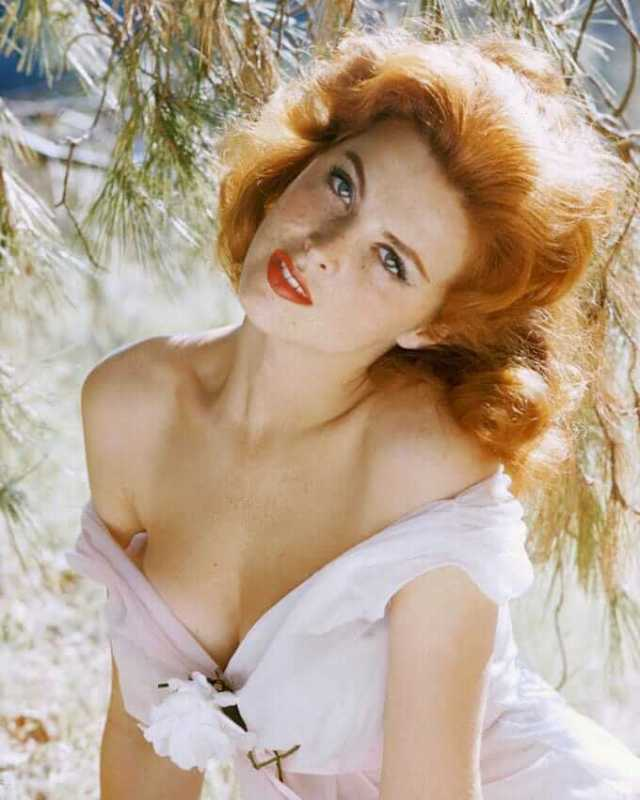 tina louise hot cleavage pic