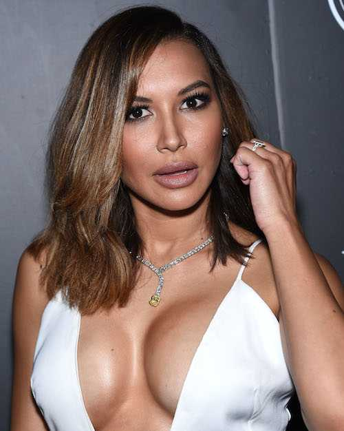 Naya Rivera boobs pics