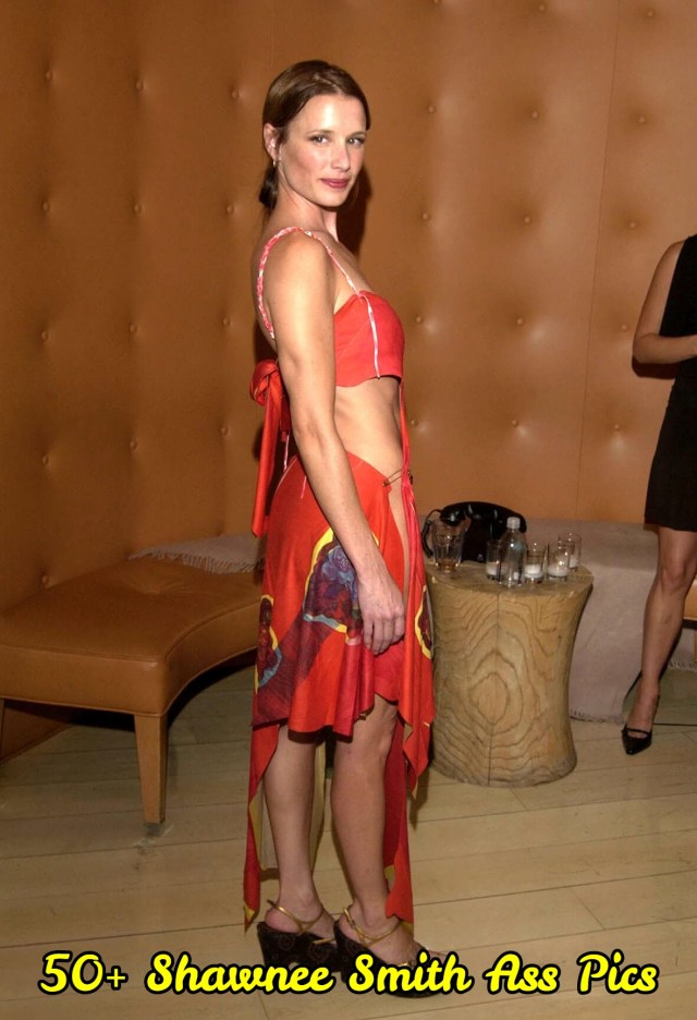 Shawnee-Smith-awesome-dress-min