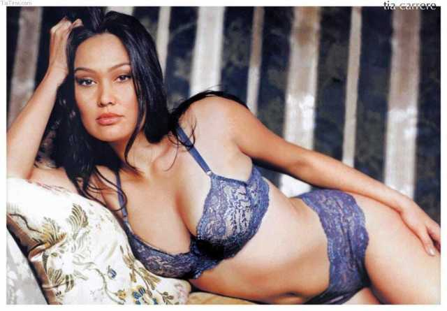 Tia Carrere nipples