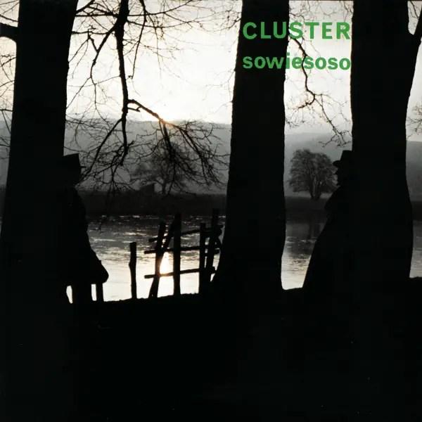 Goran Kajfes Subtropic Arkestra - Cluster -- Sowiesoso