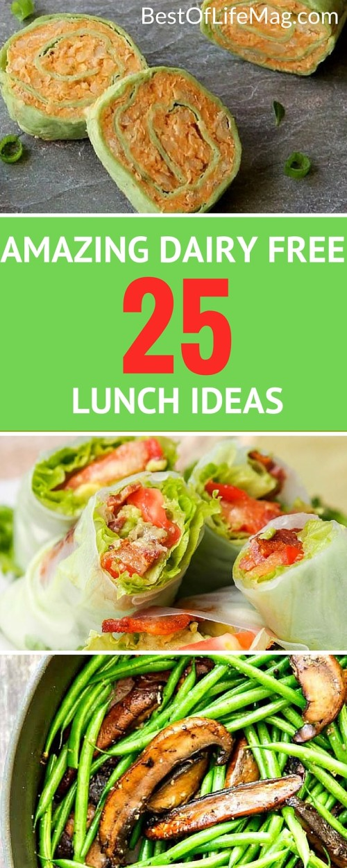 150 Dairy Free Diet Meals - The Ultimate List - The Best ...