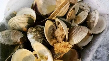 The Best of: The Highlands Clam Fest