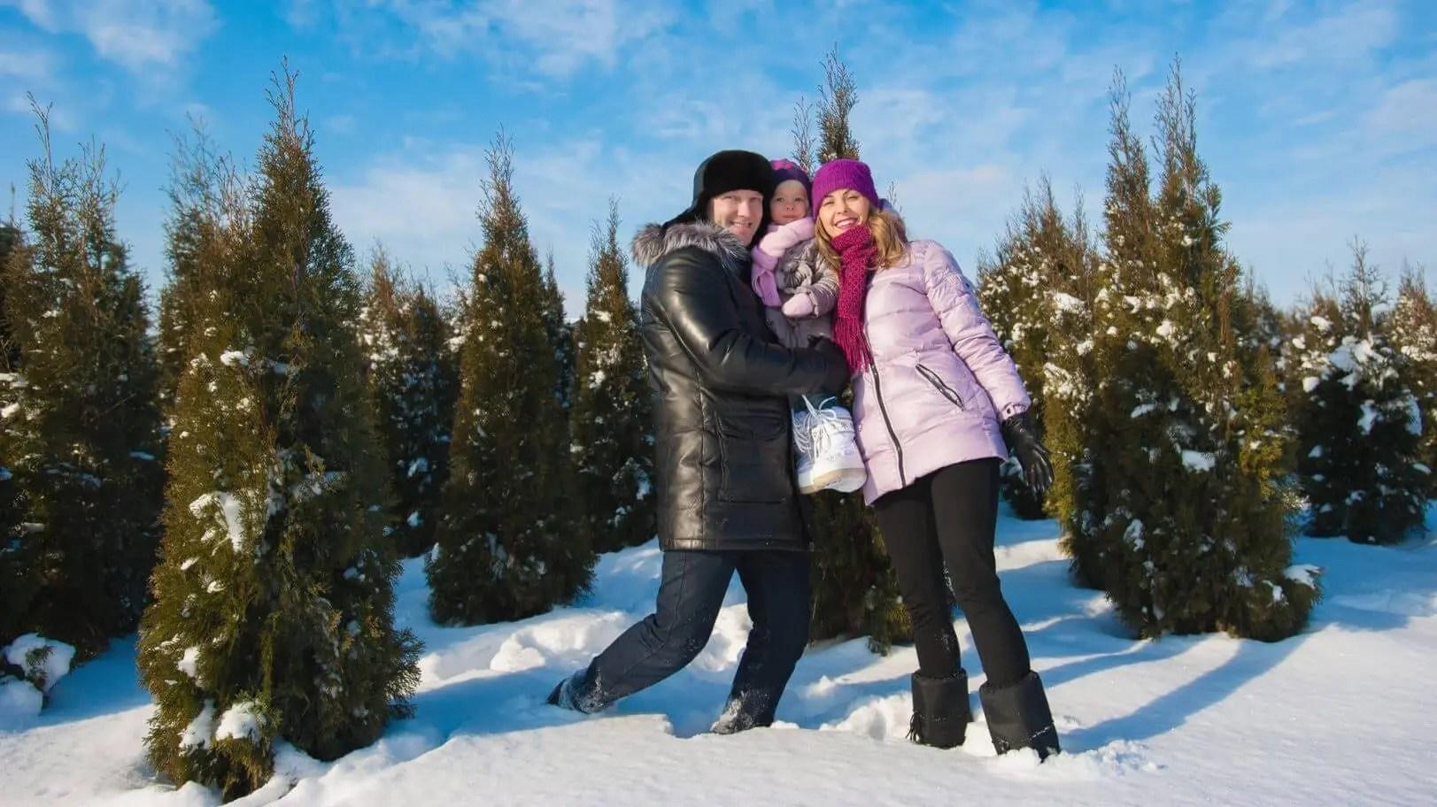 The Best Christmas Tree Farms in NJ - Best of NJ: The Best of NJ ...