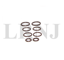 BMW X5 E53 4.4i / 4.6is 2000-2004 M62TU VANOS SEALS REPAIR