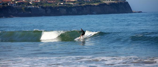 Torrance Beach Surfer