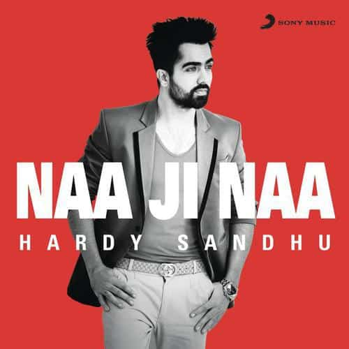Naa Ji Naa album artwork