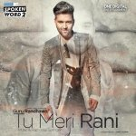 Tu Meri Rani album artwork