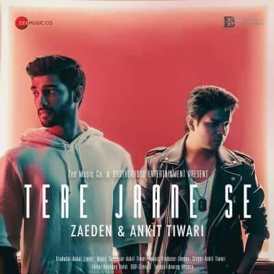 Tere Jaane Se album artwork