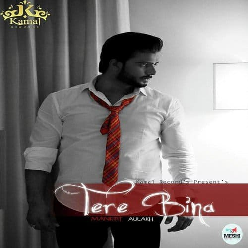 Tere Bina album artwork