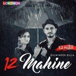 12 Mahine artwork