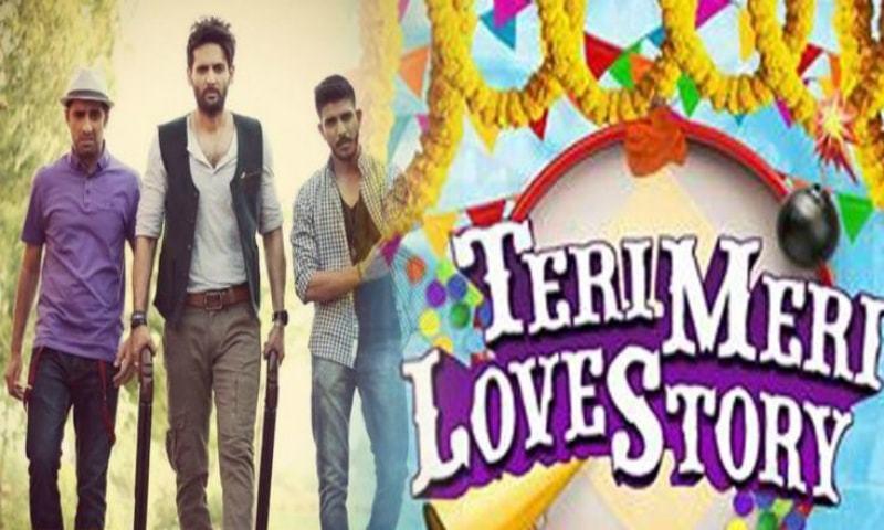 Teri Meri Love Stories tv serial poster