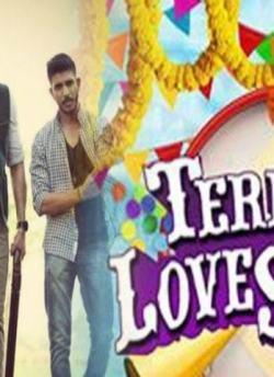 Teri Meri Love Stories movie poster