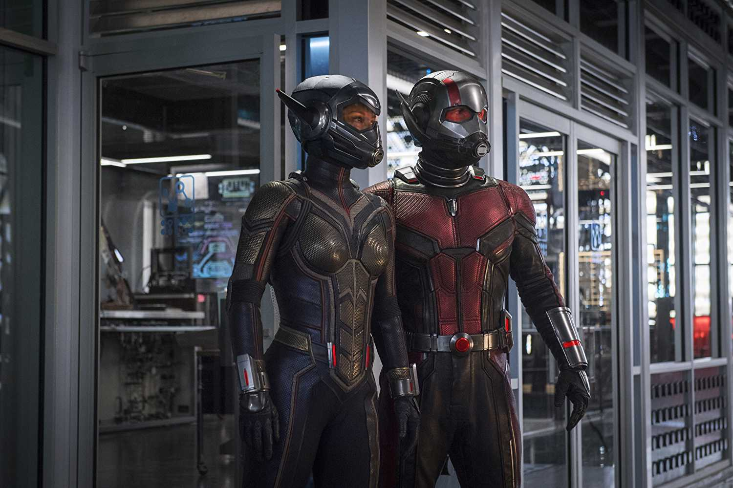 Ant-Man and the Wasp Movie Still