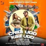 Chirri Udd Kaa Udd artwork