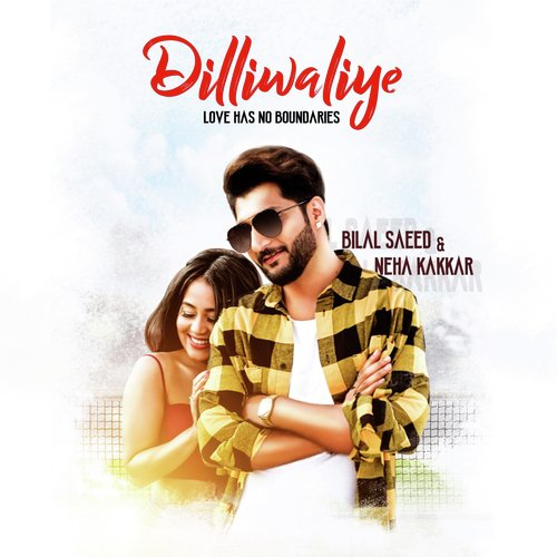 DilliWaliye album artwork