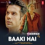 Baaki Hai artwork