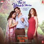 Tu Hi Yaar Mera artwork