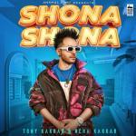 Shona Shona artwork