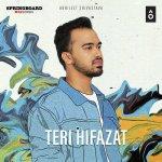 Teri hifazat artwork