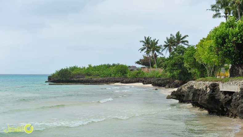 جزيرة نيجروس